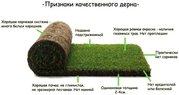 Профессиональная укладка рулонного газона 'под ключ''